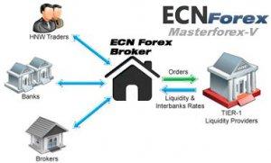 Классификация валютных рынков