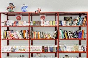 Оградить читателя от книг! или Художественная литература – враг российских детей