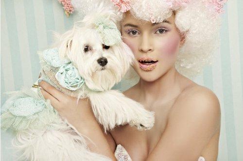 Коллекция haute couture для домашних питомцев уже в Москве