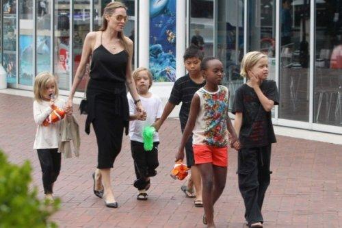 Семейство Джоли и Питта пополнилось седьмым ребенком