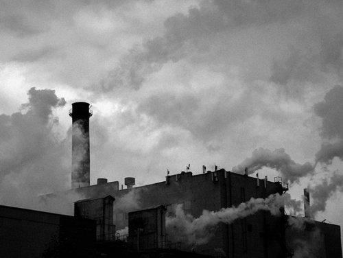 Гендиректора ТОАЗ Суслова подозревают в сокрытии выбросов аммиака