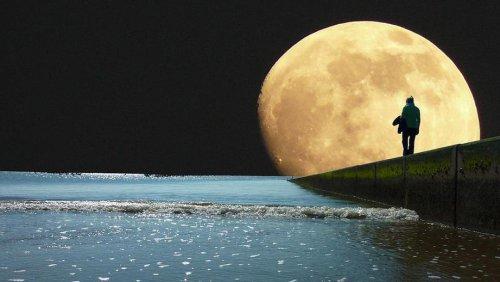 Даёшь «лунный принтер»!:  С помощью новых технологий на Луне построят «песочные города»