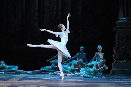 Прошла  20-часовая онлайн-трансляция балета и закулисной жизни Большого театра