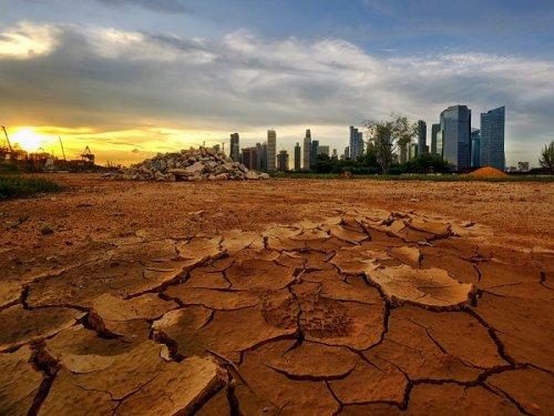 Выиграет ли Россия от климатической катастрофы?  - Похоже, да